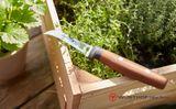 Nôž na zber 8 cm Wüsthof Urban Farmer
