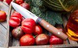 Kuchársky nôž 16 cm Wüsthof Urban Farmer